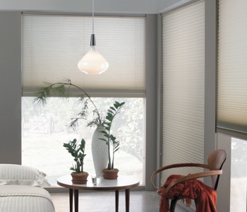 roller shades in Honolulu home